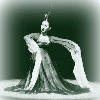 Девушка из Сувона... :: Андрей Головкин