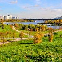 Братеевский парк :: Анатолий Колосов