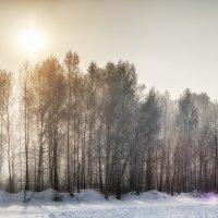 Зима :: Кирилл Богомазов