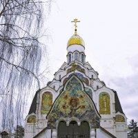 Храм Спаса Нерукотворного Образа. :: Oleg4618 Шутченко