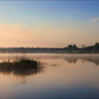 Про юного рыбака :: Сергей Шабуневич
