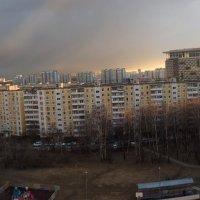 ужасная весна в Москве :: Лариса Батурова