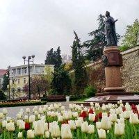 Весна :: Виктория Калицева