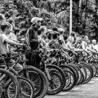 Bicycle season is open/велосипедный сезон открыт :: Dmitry Ozersky