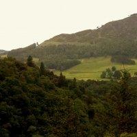 Южная Шотландия :: Марина Домосилецкая