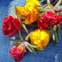 Цветики :: Tatjana