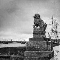 Санкт- Петербург. Китайские львы Ши-Цза на Петровской набережной :: Елена Кириллова