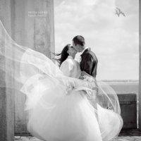 Свадебное фото :: Евгения Флусова