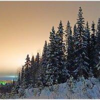 Свет города в ночи :: Виктор Бондаренко