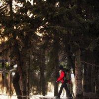 парк :: Olga