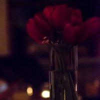 Тюльпаны и свеча :: Олег Брусенцев