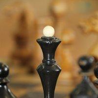 На клетках шахматной доски немыслима несправедливость..... :: Tatiana Markova