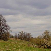 У реки...апрель. :: Галина Кучерина