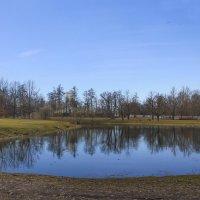 Как чуден наш парк при ясной погоде.... :: Tatiana Markova