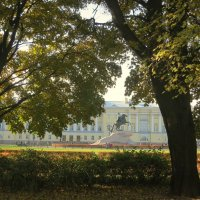 Взгляд сквозь листву... :: Валентина Жукова
