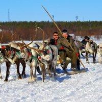 Праздник Севера. с.Ловозеро Мурманской области :: Tatyana Nemchinova