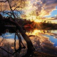 Закат на Красном пруду :: Сергей Базылев