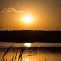 Вечернее озеро :: Екатерина Рыбина
