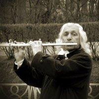 Уличный флейтист :: Taisia_ZX