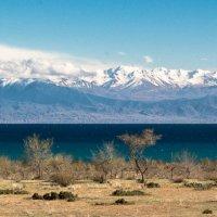 Озеро Иссык-куль Кыргазстан :: Sergei Alekseev