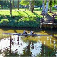 На реке Яркон, Израиль :: Борис Херсонский