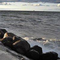 Балтика :: Натали Пам