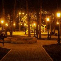 В парке ночью :: Георгий Морозов