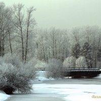 зимний день :: василиса косовская