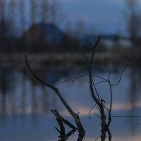 вечерняя :: Константин Нестеров