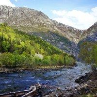 Подъем по одной из первых туристических дорог Норвегии :: Елена Павлова (Смолова)