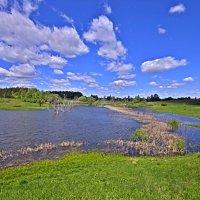 Северная оконечность озера в Тиганово :: Дубовцев Евгений