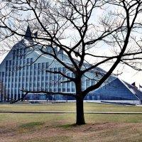 Латвийская национальная библиотека :: Swetlana V