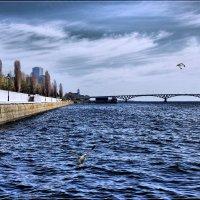 Волга, набережная, мост... :: Anatol Livtsov