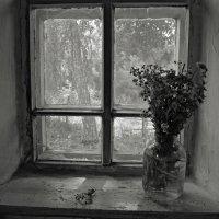 Окно :: Ирина Курмалеева