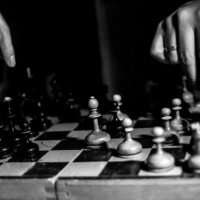 Шахматная партия :: Дарья Гутинская