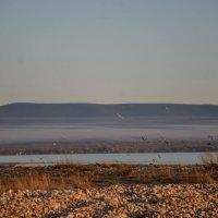 Байкал :: Алёна Хрянина