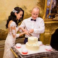 Свадебная съемка (банкет) :: Николай Сардаев