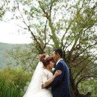 Свадьба в Кыргызстане :: Absatarov