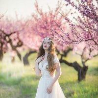 Цветение в Крыму :: Александра Капылова