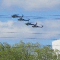 Звено вертолетов над городом :: Дмитрий Никитин