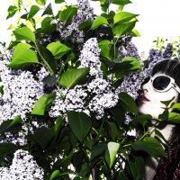 магия весны :: Роза Бара