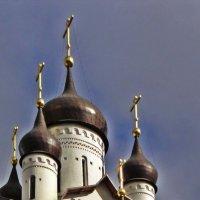 Храм Святого Первоверховного Апостола Петра в Веселом Поселке :: Елена Павлова (Смолова)