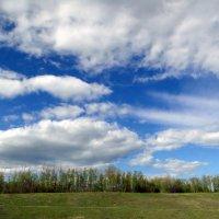 Весеннее небо :: Елена Шемякина