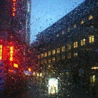 Дождливый вечер. :: Senior Веселков Петр