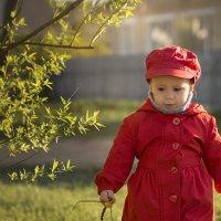 На майском солнышке :: Вера Сафонова