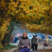 Золото осени :: Тамара Гереева
