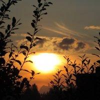 Закатное явление :: Петр Ваницын