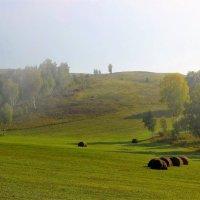 Покос :: Сергей Чиняев