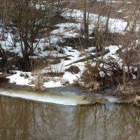 Лёд на реке почти растаял. :: Марина Китаева