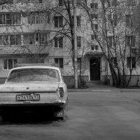 Волга ч/б :: Лилия Кондратьева